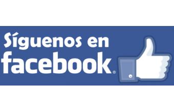 Facebook CEIP MIGUEL DELIBES